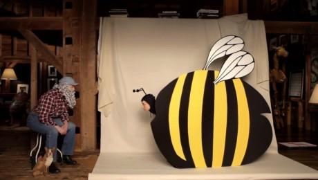Isabela Rossellini scrie, regizeaza si joaca intr-o serie de filmulete despre cum se imperecheaza insectele