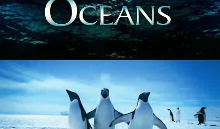 """""""Oceans"""", continuarea filmului Disney """"Earth"""""""