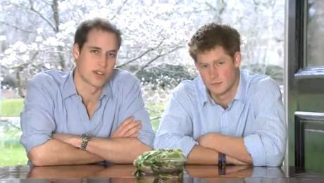 Printii William si Harry fac echipa cu o broasca pentru padurea tropicala