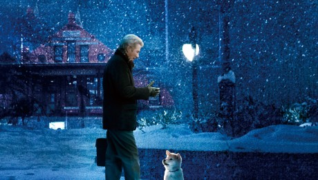 Richard Gere, intr-un film despre loialitatea unui catel