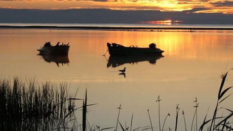 Delta Dunarii – Paradisul aproape pierdut!