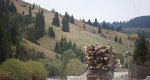 camion-e1418205881895