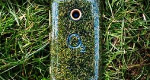 O2-Grass-Phone-537x405
