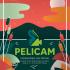 afis_Pelicam2015