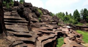 roci din China