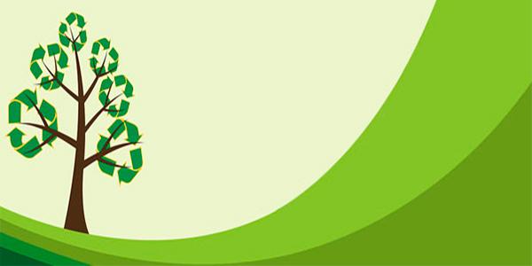 Sondajele Green Report