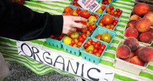 produsele organice