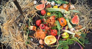compost foto: Rodale's Organic Life