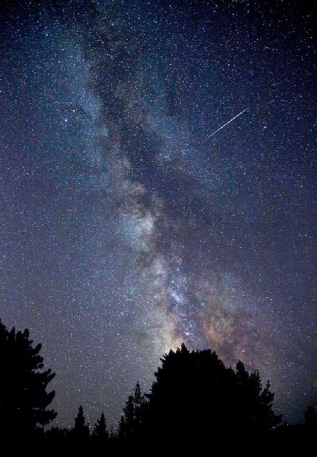 2010 Perseid Meteor Shower