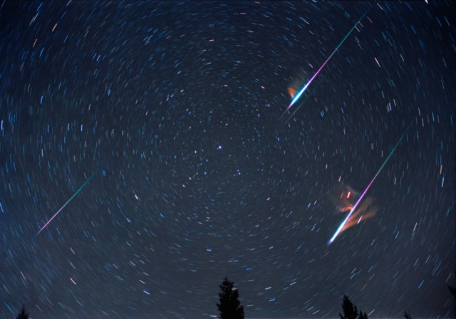 Leonid Double Bolides in the Night Sky