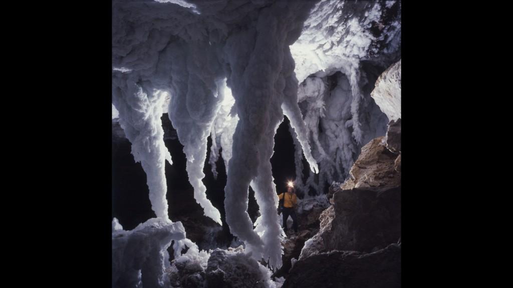 Tentacule de selenit, Pestera Lachuguilla, America de Nord