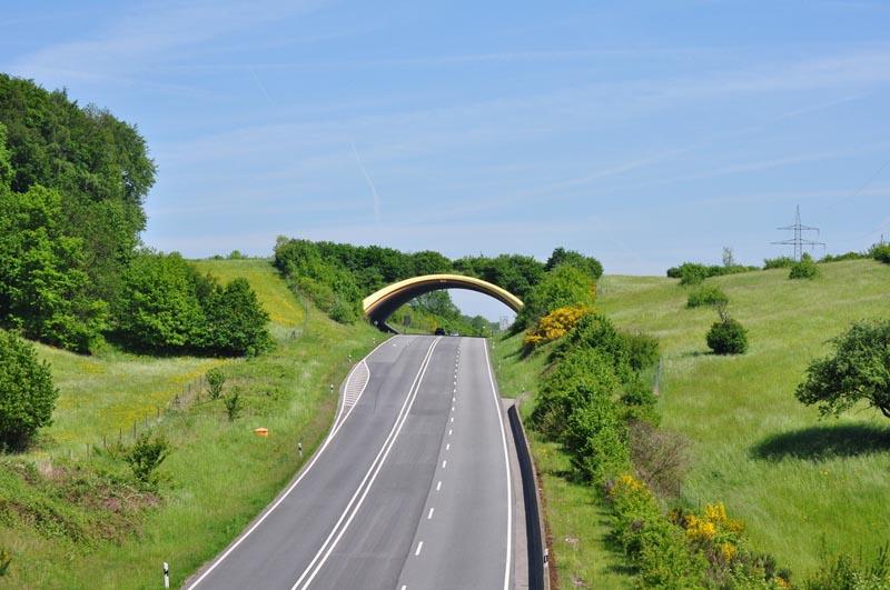 b38-birkenau-germany-animal-bridge-wildlife-crossing-overpass