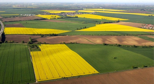 An aerial view of yellow rape fields, green cornfields and brown acres at the Magdeburger Boerde