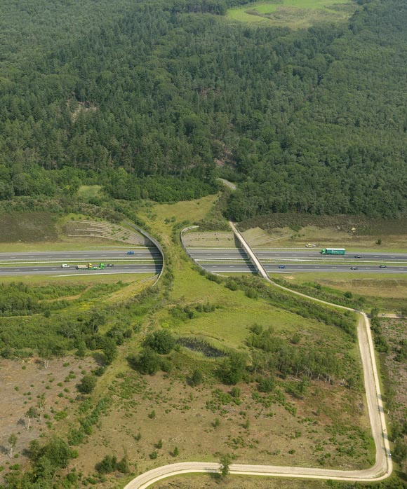 the-borkeld-netherlands-animal-bridge-wildlife-crossing-overpass