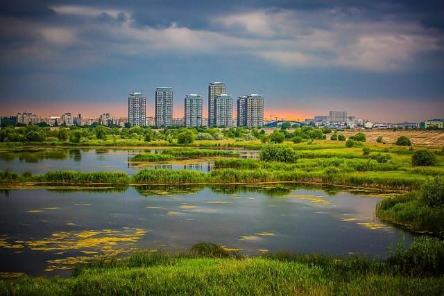foto Octav Dragan