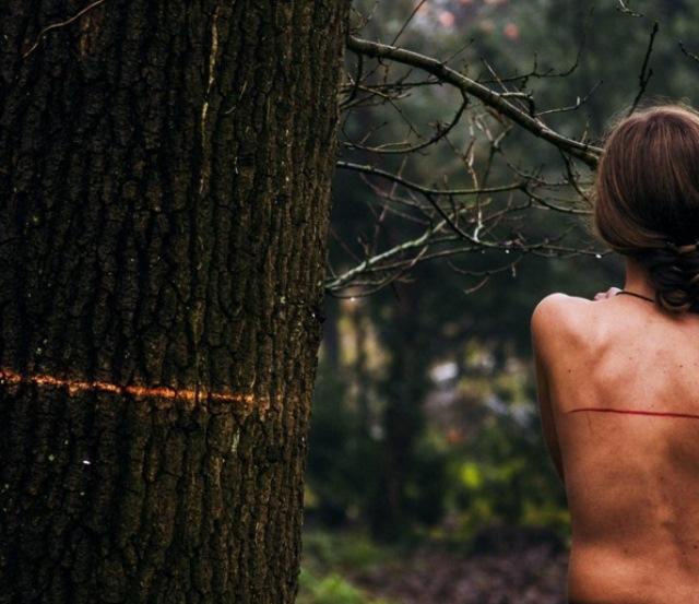 Premiul 1: Geanina Ioviță, deforestare