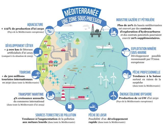 infografic mediterana