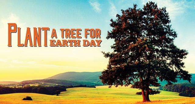 copaci ziua pamantului