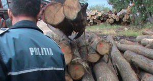 gărzile forestiere