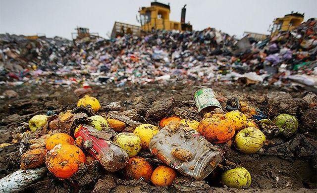 risipa alimentară impact mediu
