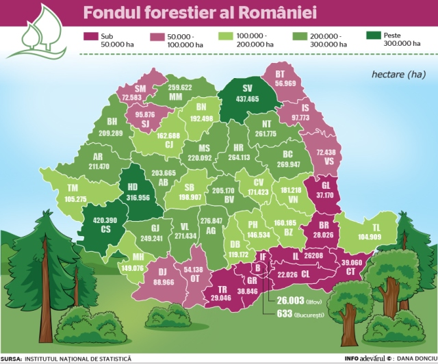 fond forestier păduri