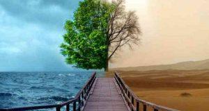 Primele măsuri pe care trebuie să le pui în practică pentru a proteja mediul