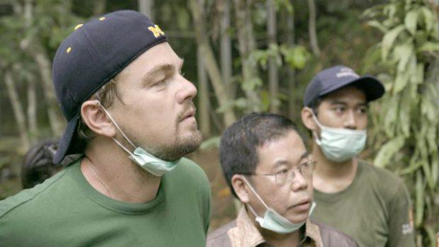 6 vedete care luptă pentru protejarea mediului înconjurător