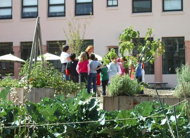 Trend mondial: elevii învață în școli verzi