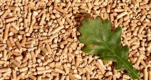 legea bioenergiei