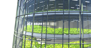 agricultura verticala