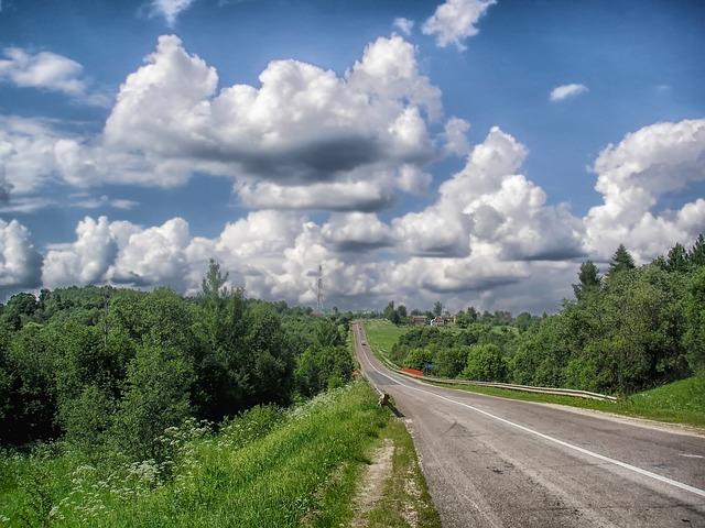 Romsilva pregătește exproprierea a 600 de hectare pentru înființarea de perdele forestiere