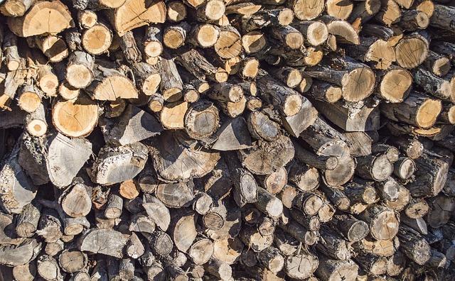 Cantitatea de lemn de foc vândută de Romsilva populației a crescut cu 20%, în mai puțin de două luni