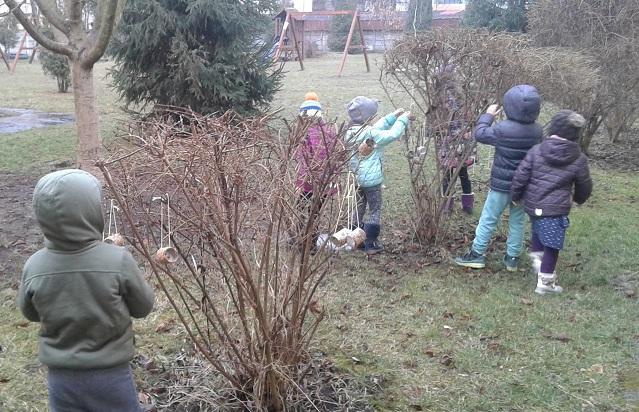 Societatea Ornitologică Română învață copiii cum să aibă grijă de păsări și insecte