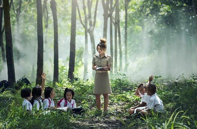 Ora de ecologie. 10 proiecte ale ONG-urilor care aduc educația ecologică în școli