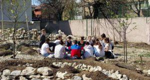 Școli Verzi, o platformă și un opțional pentru educația de mediu