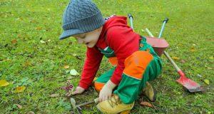 Ora de ecologie. Povestește-ne cum îl înveți pe copilul tău respectul față de mediu