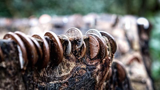 Prețul lemnului ar putea crește cu peste 400% anul viitor