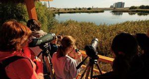 Parcul Natural Văcărești, educație ecologică în primul parc natural urban din România
