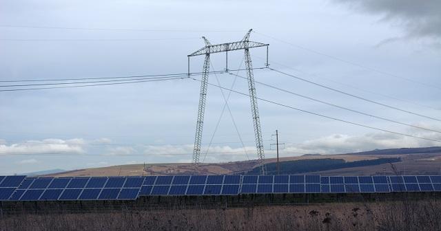 Primul parc fotovoltaic din România auditat din punct de vedere al conservării naturii
