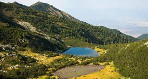 pirin wwf statiune montana