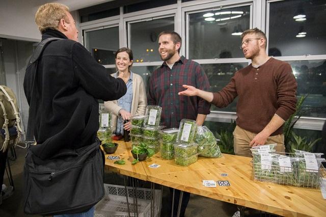 Square Roots, școală de grădinărit urban, cu practică în containere maritime