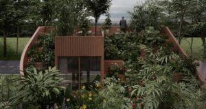 case natură