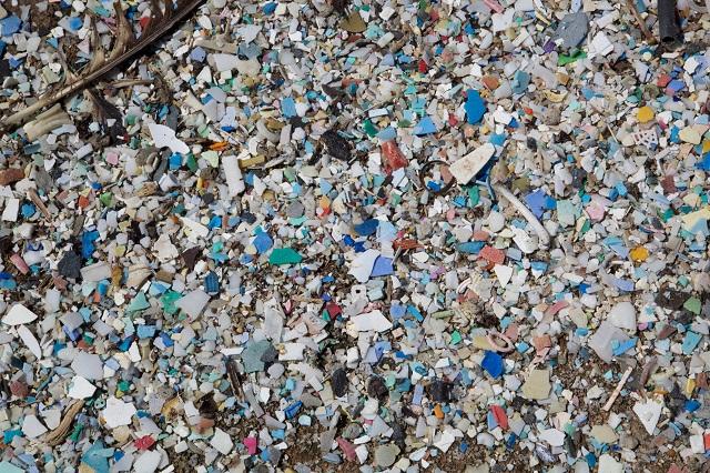 poluare plastic insula gunoi pacific