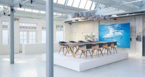 plastic whale mobilă deșeuri