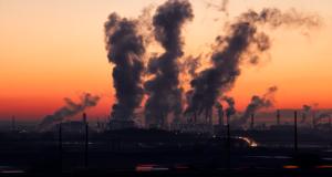 poluarea aerului dezvoltarea creierului