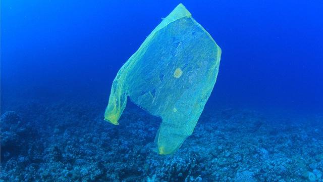 pungi plastic oceane