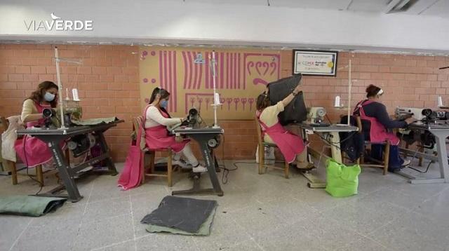 1.000 de stâlpi din Mexic, transformați în grădini verticale