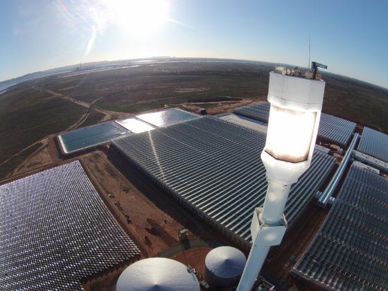 Sundrop, fermele din deșert care produc 17.000 de tone de roșii pe an