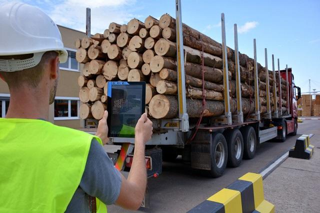 Holzindustrie Schweighofer continuă să se asocieze cu lemne din parcurile naționale