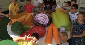 Akademia Kinderland, școala gratuită de nutriție pentru copii